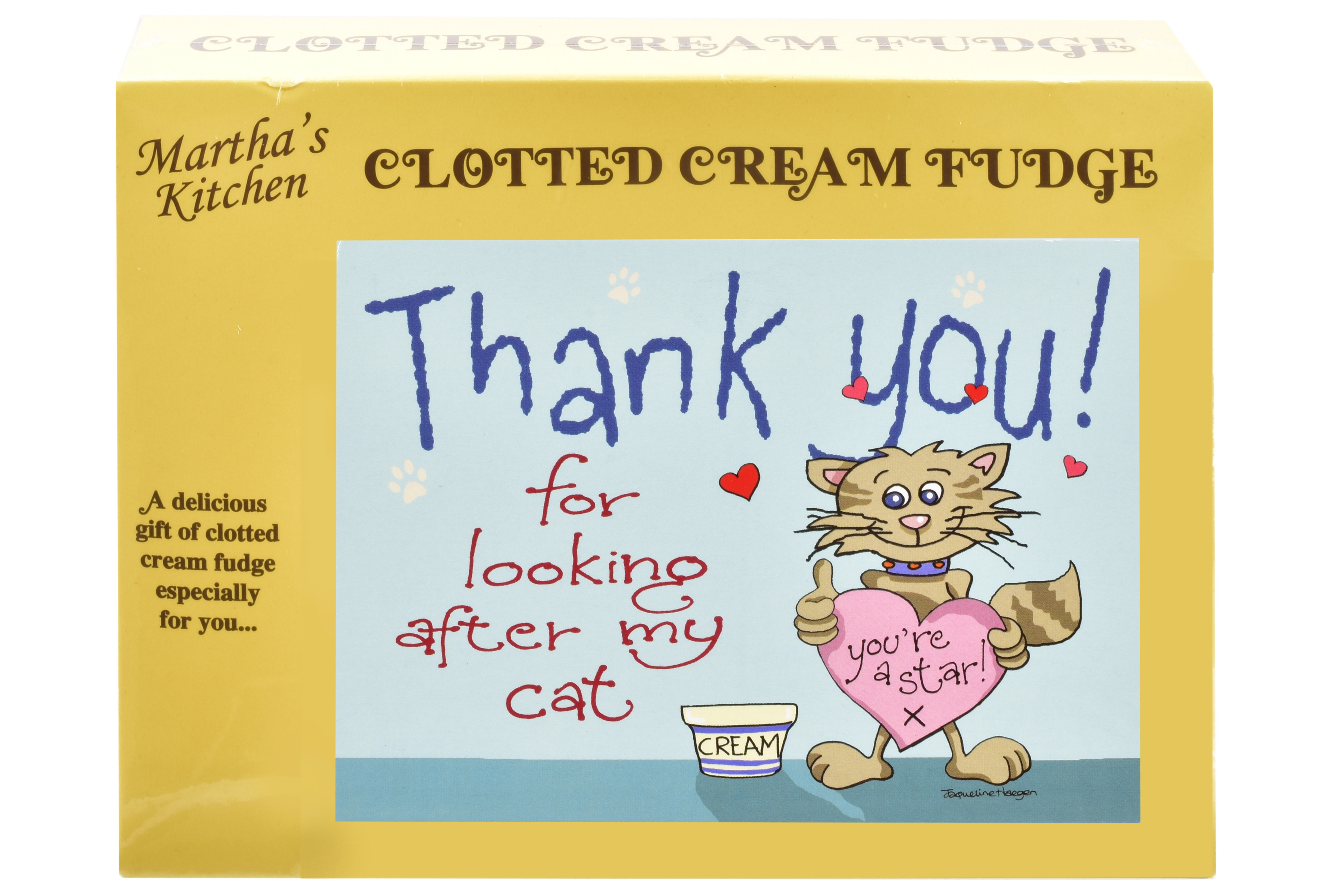 100g Clotted Cream Fudge 'Cat' Postcard Box