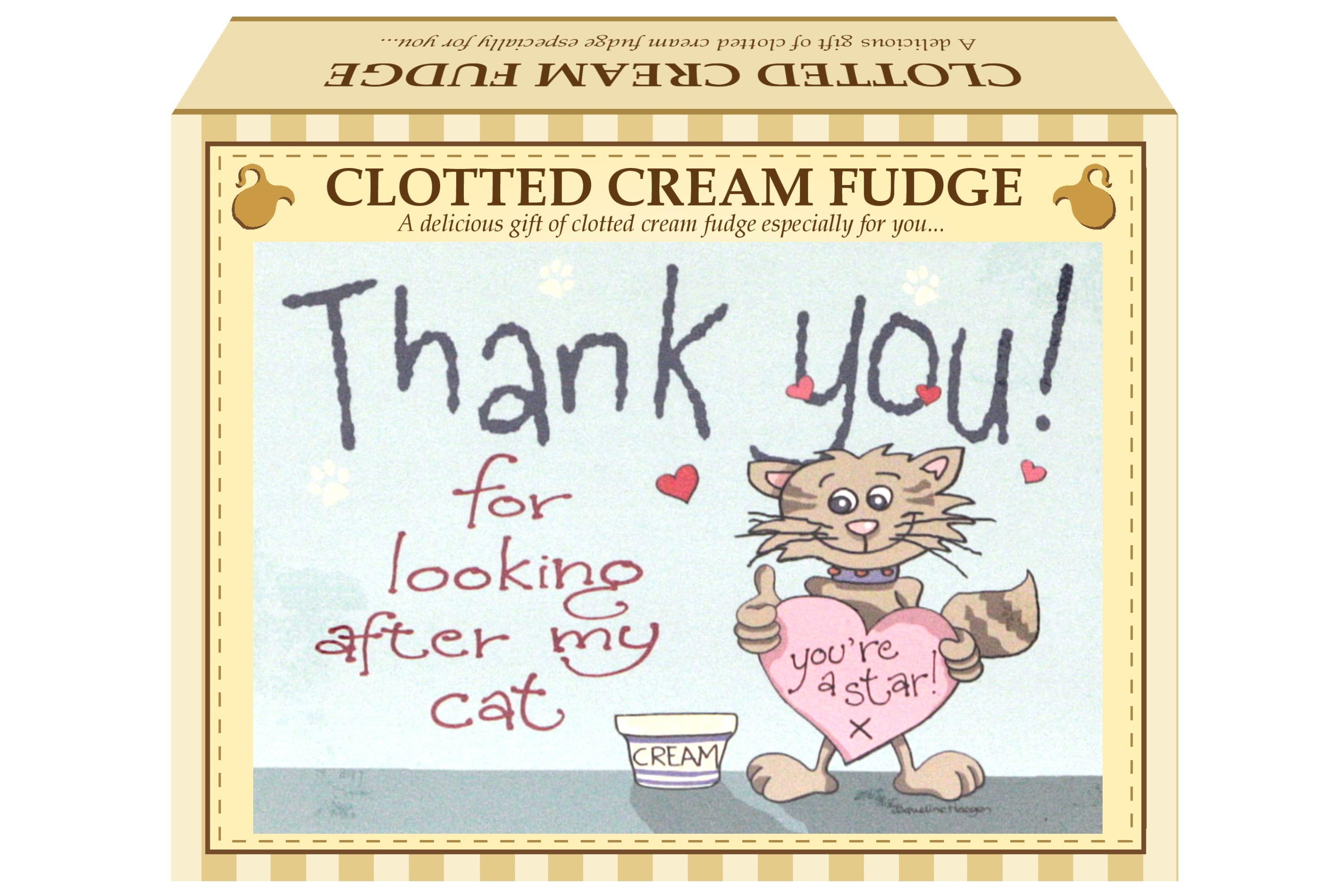 "100g Clotted Cream Fudge ""Cat"" Postcard Gift Box"