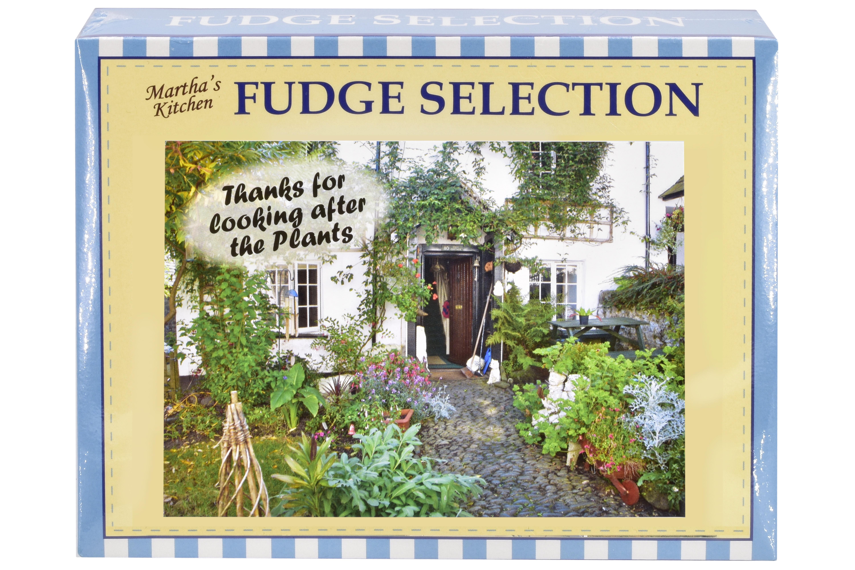 "100g Mixed Fudge ""Plant"" Postcard Gift Box"