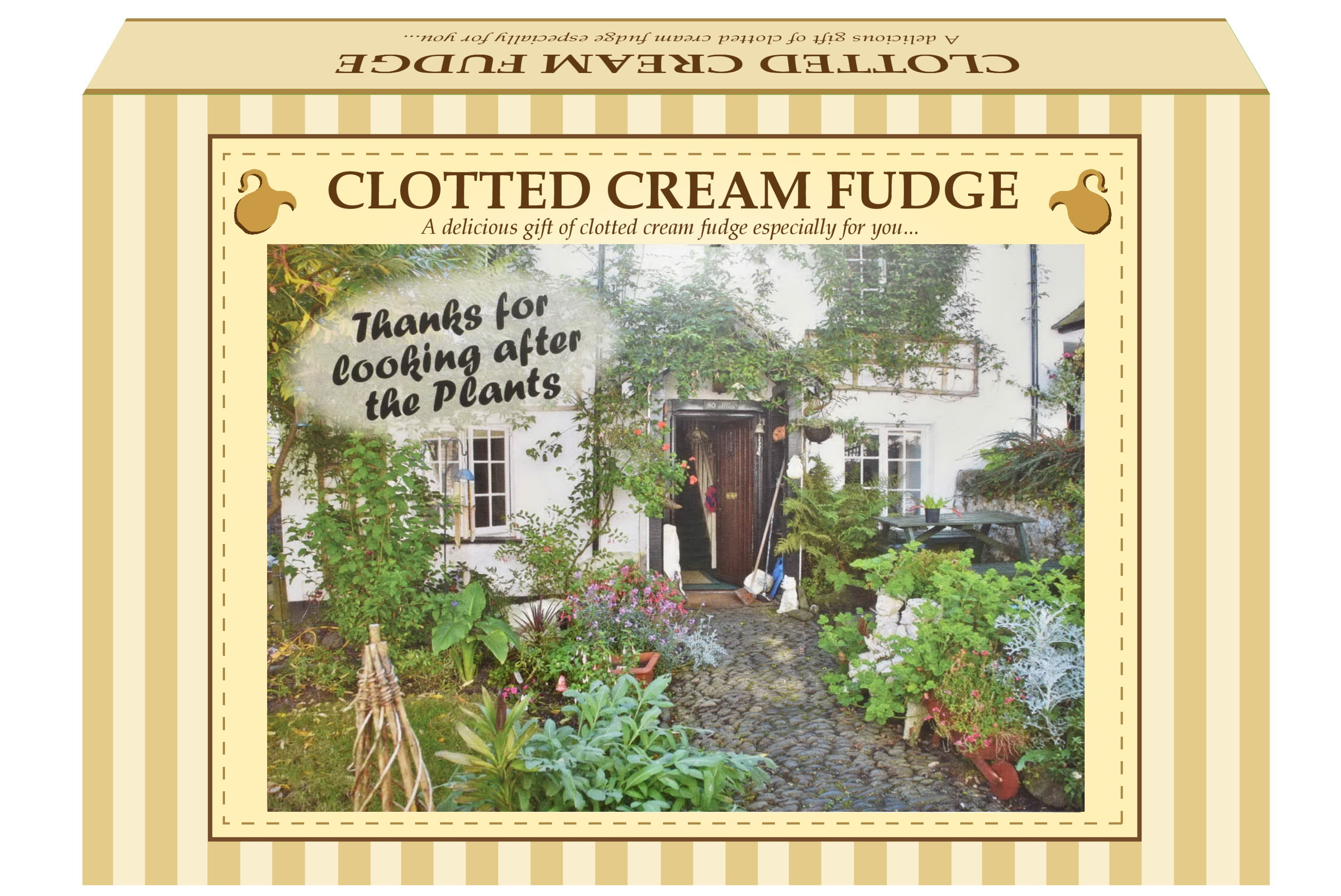 "200g Clotted Cream Fudge ""Plant"" Postcard Gift Box"