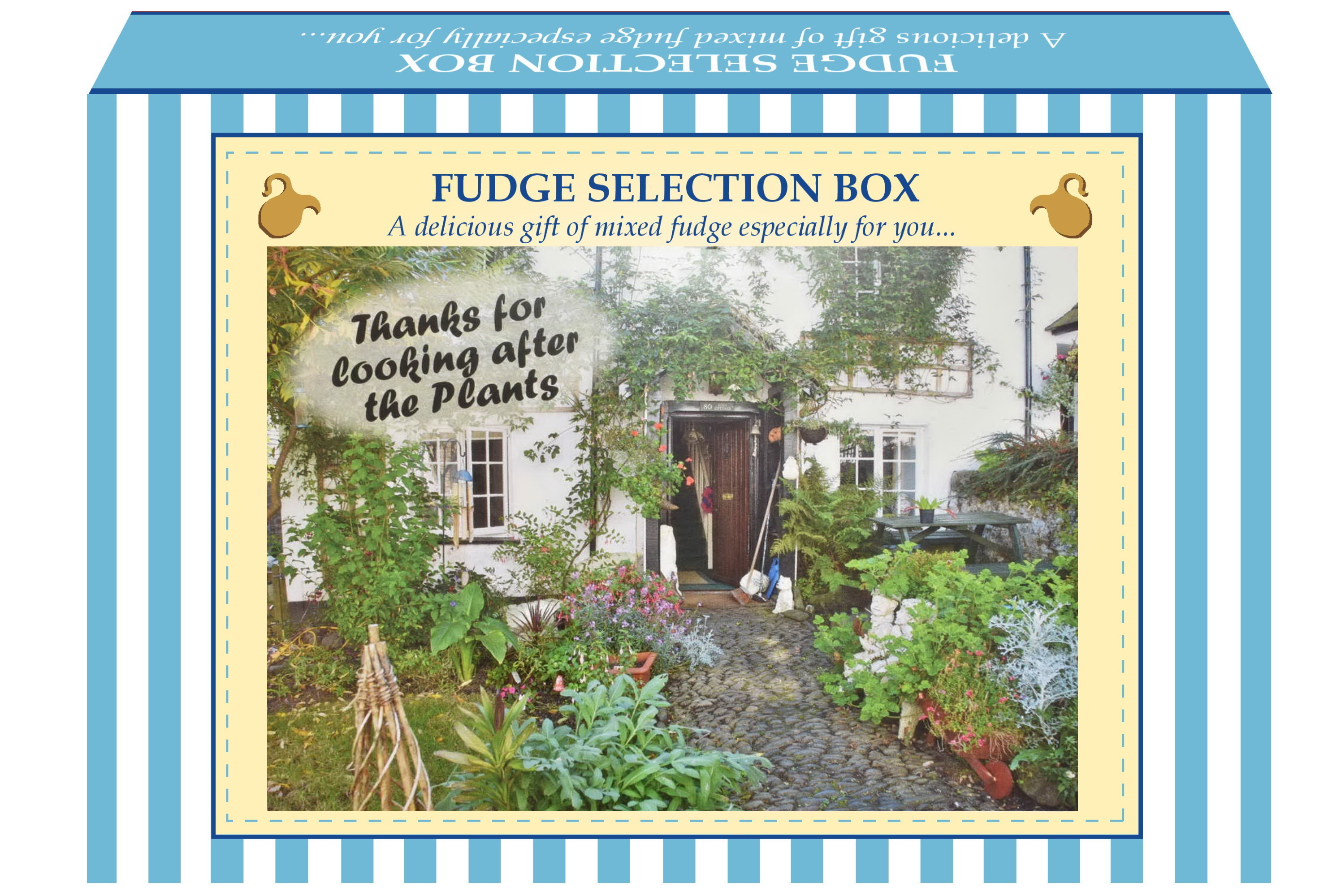 "200g Mixed Fudge ""Plant"" Postcard Gift Box"