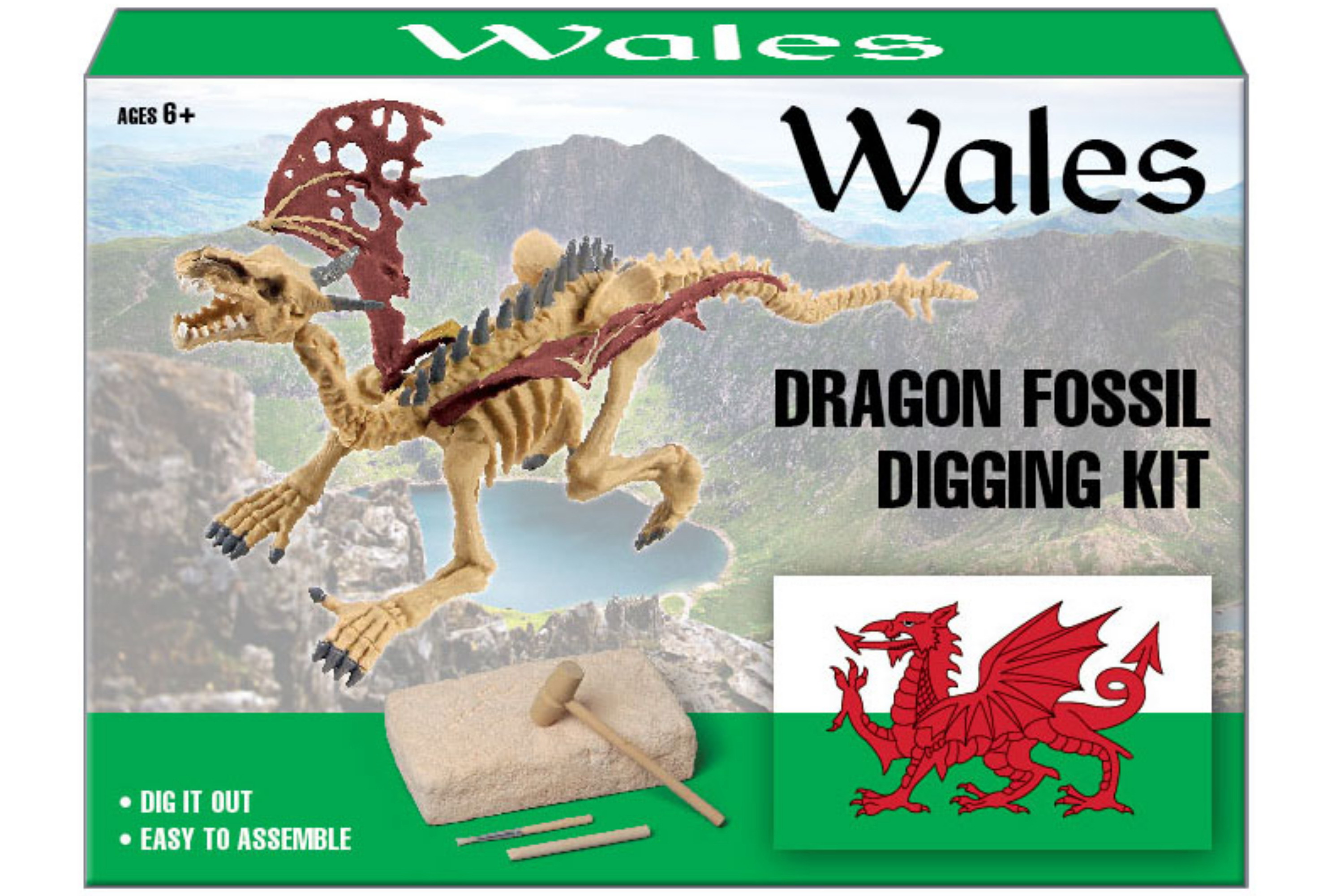 Dig Out Welsh Dragon Fossil Kit In Colour Box
