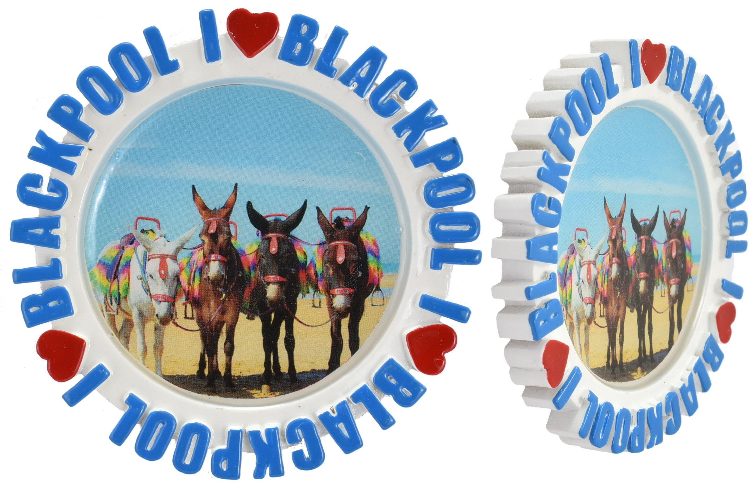 Round Resin Magnet Epoxy Donkeys Picture I L Blackpool