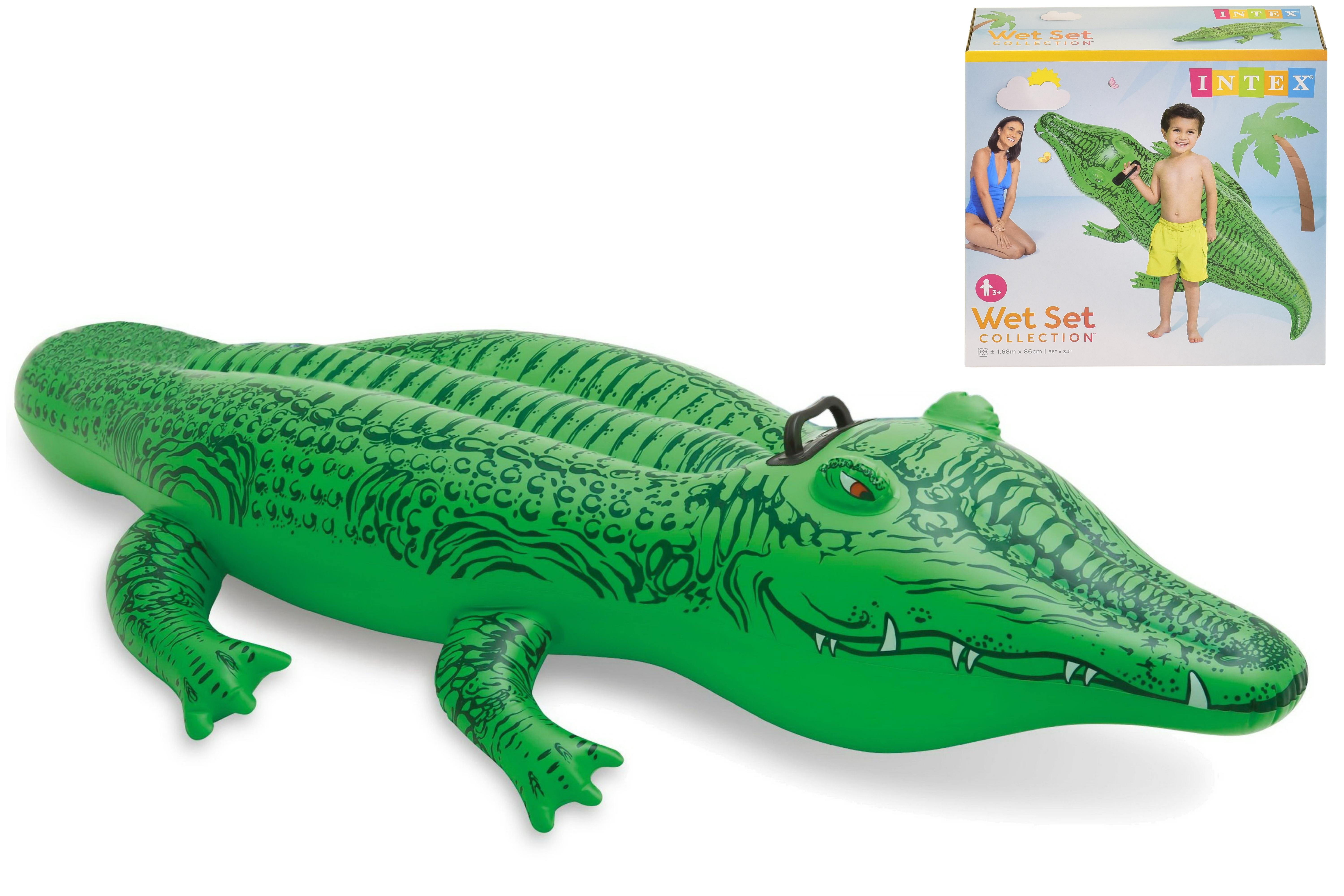 "Lil' Gator Ride On 66"" x 34"" In Shelf Box"