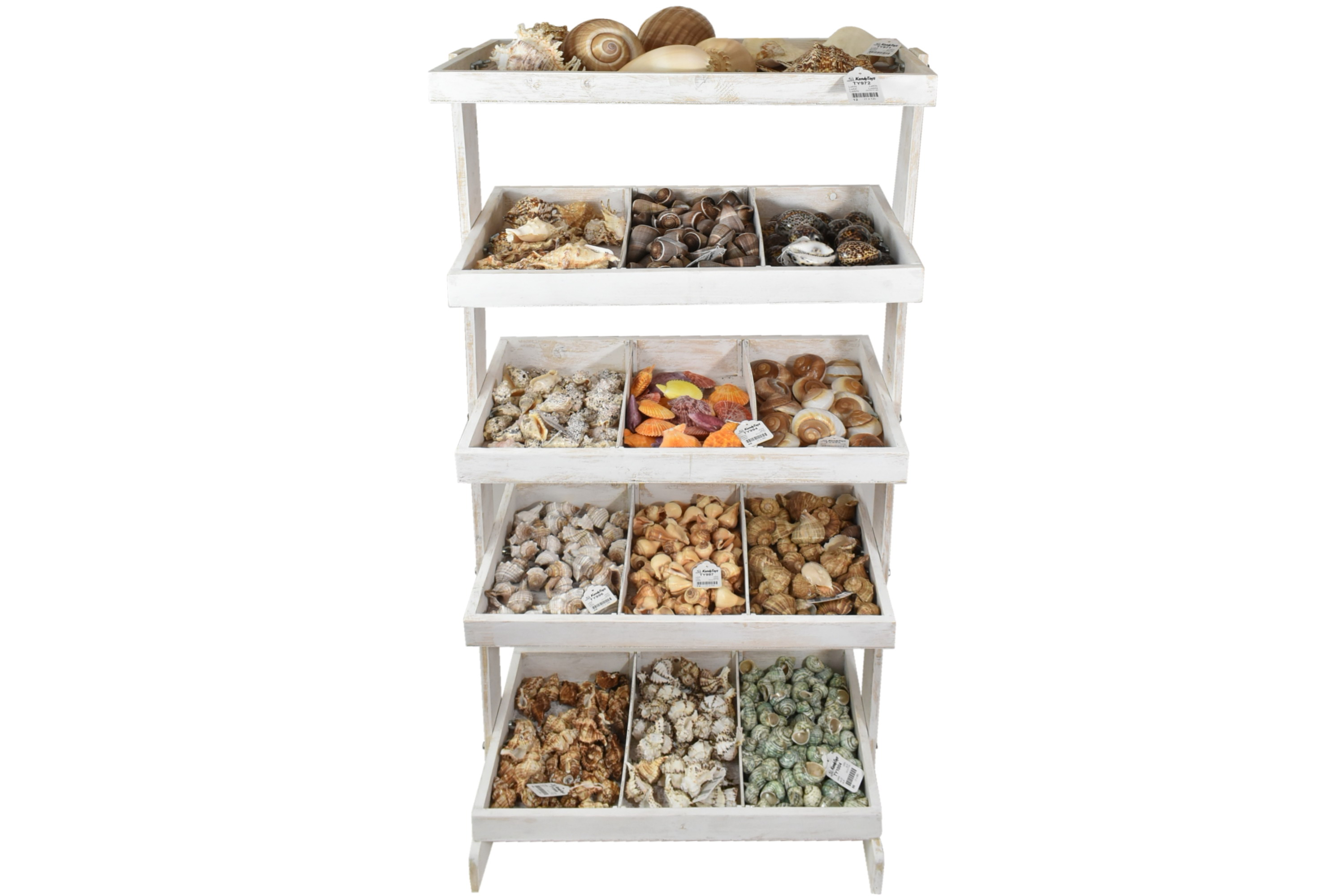 Shell Stand Shelves (1 Of 2)