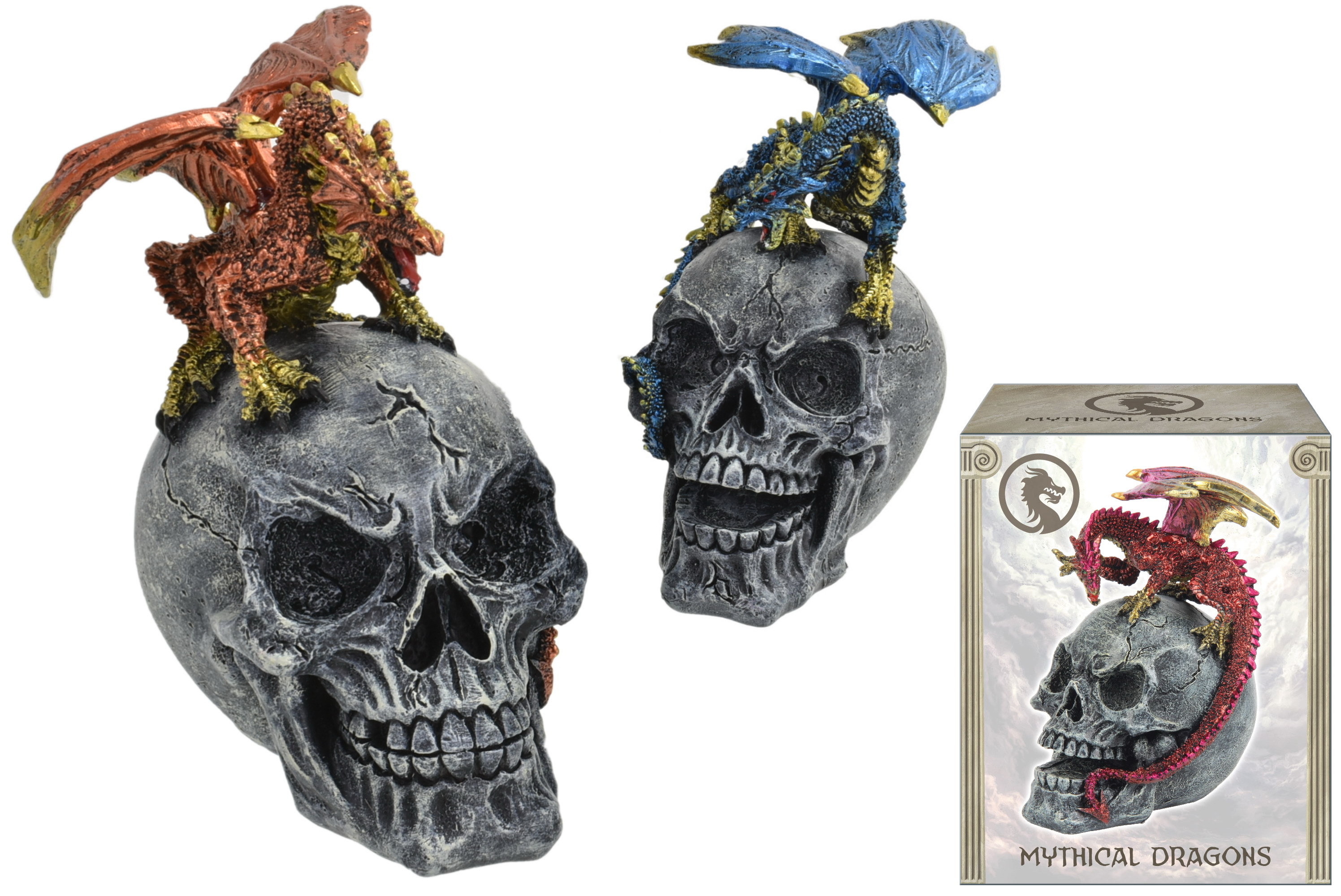 15cm Dragon On Skull 3 Assorted In Colour Box