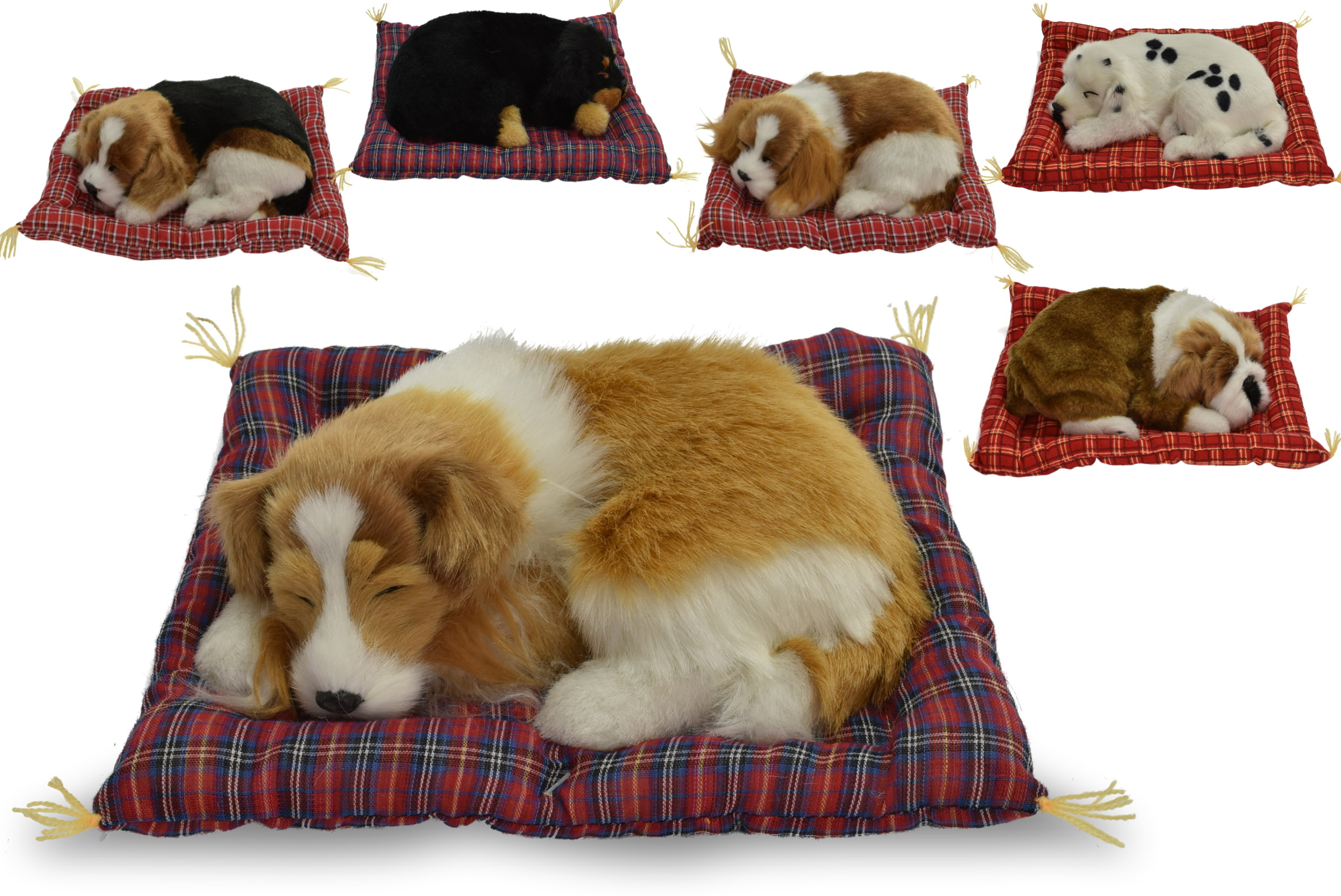 24cm Dog On Blanket With Sound - 6 Assorted