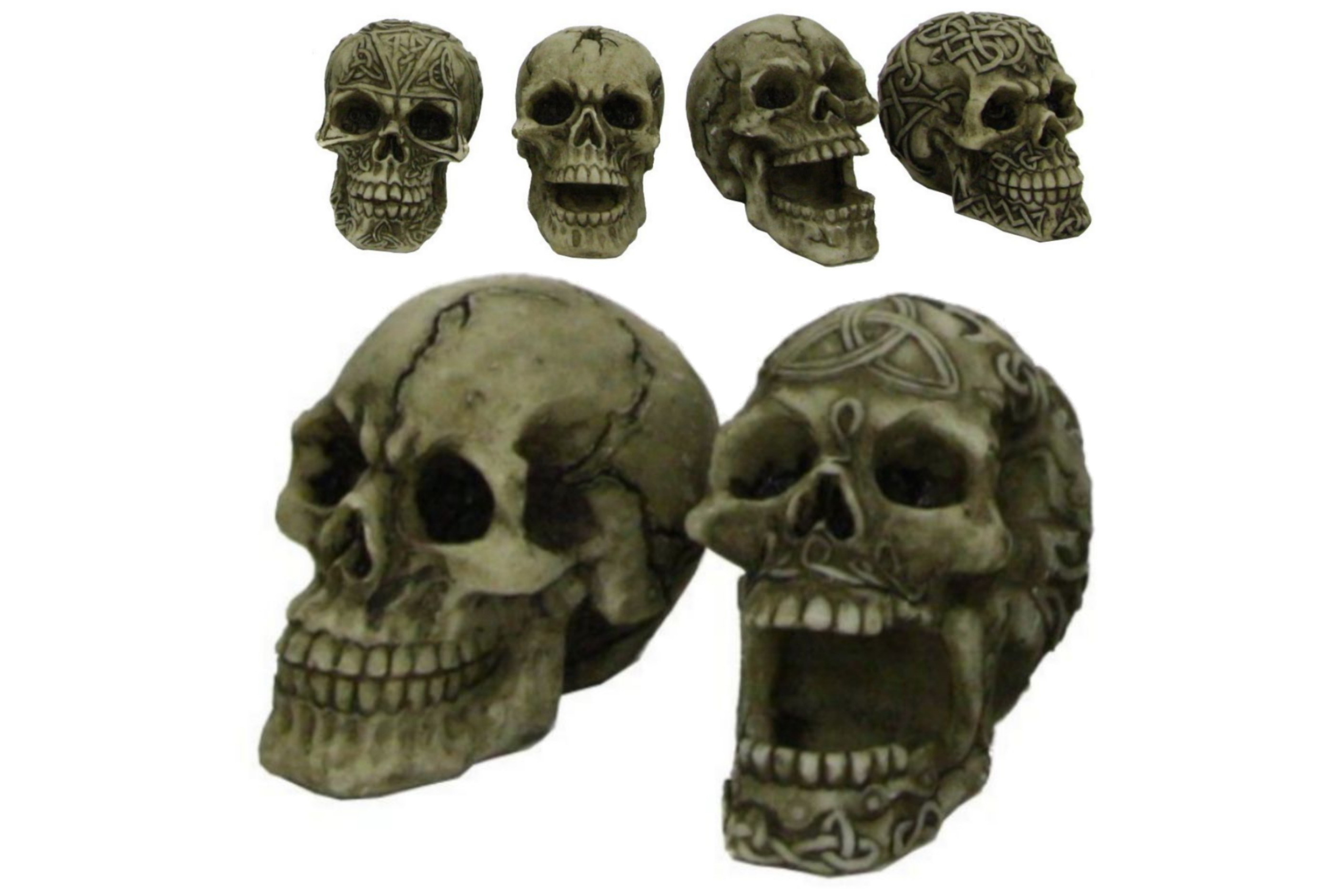 5cm Resin Skull - 6 Assorted