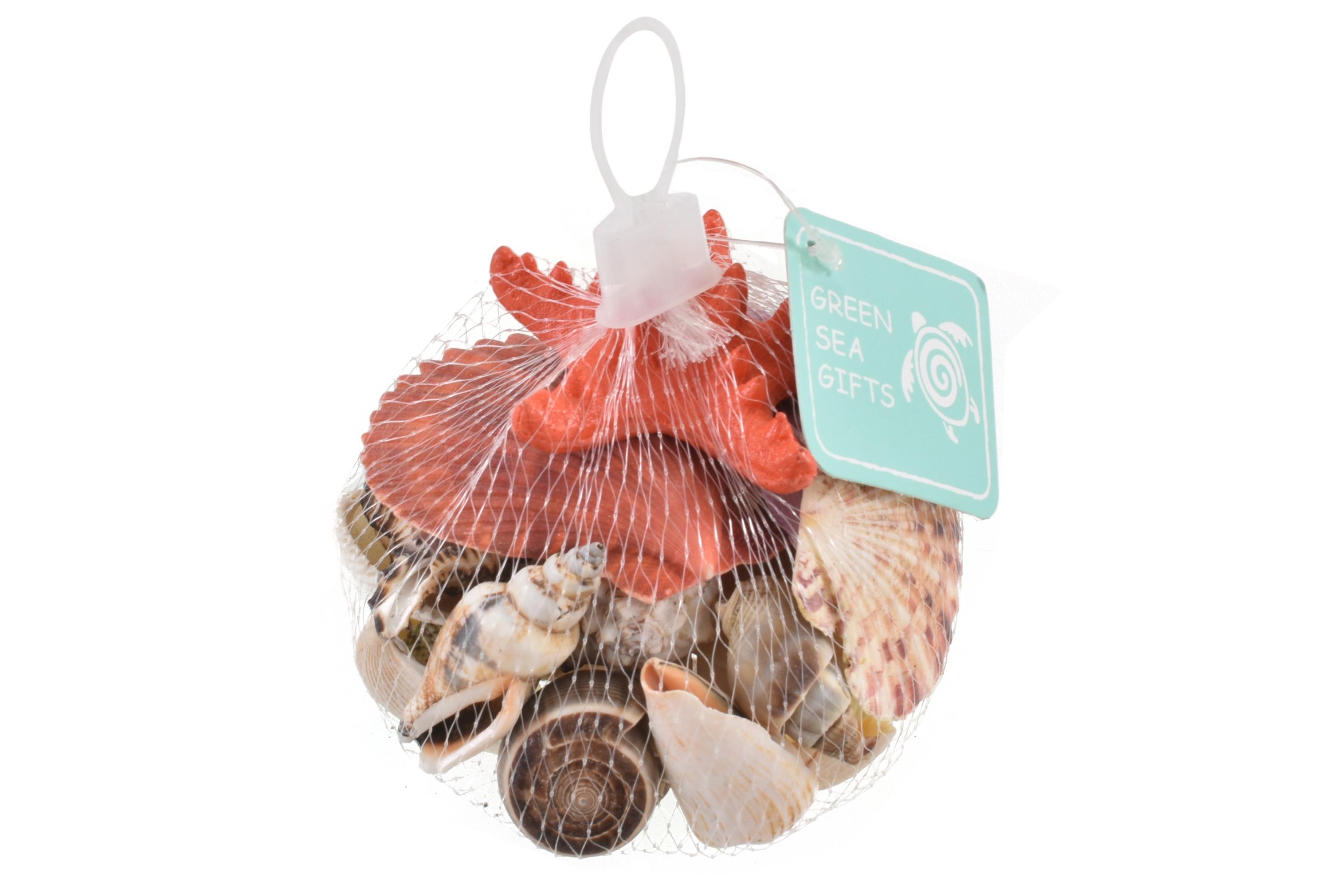 Shells In Net Bag - 250gms