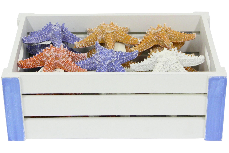 Resin Starfish (13cm) In Wood Display Crate
