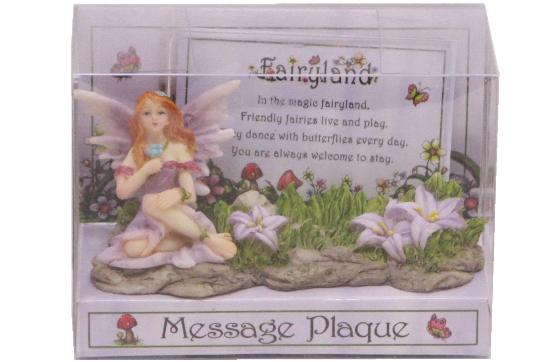 Fairyland Message Plaque In Acetate Box