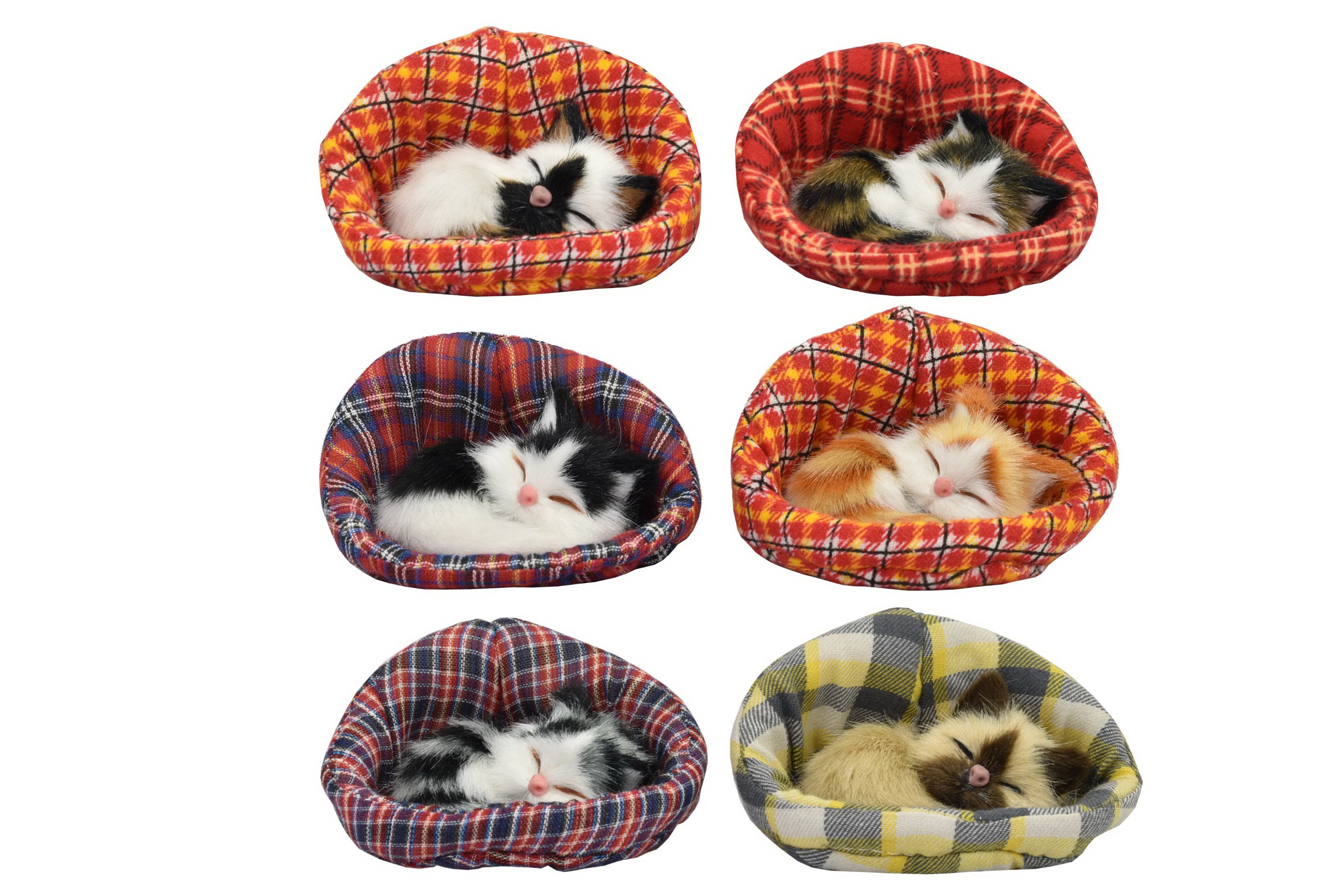 Small Kittens In Basket 6 Assorted