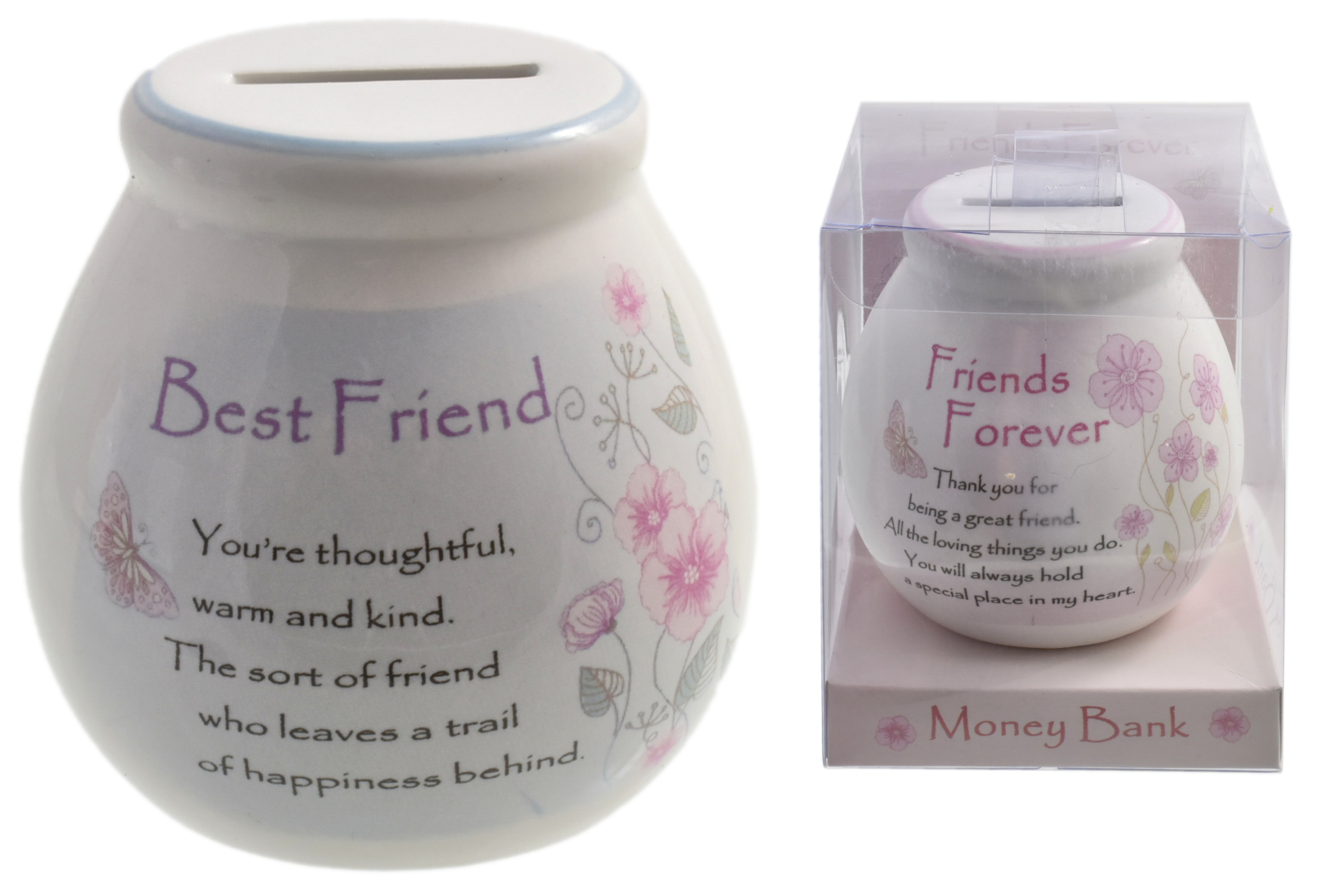 Friends Forever Moneybox 2 Assorted In Acetate Box